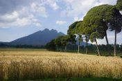 Blick auf den imposanten Muside-Vulkan an der Grenze zur Demokratischen Republik Kongo und Uganda.